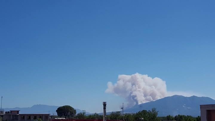 Incendio doloso nel parco del Vesuvio, distrutti 3 ettari