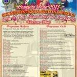 La locandina della Festa 2013