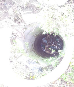 il pozzo in cui è caduto