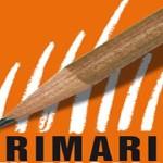 primarie-560