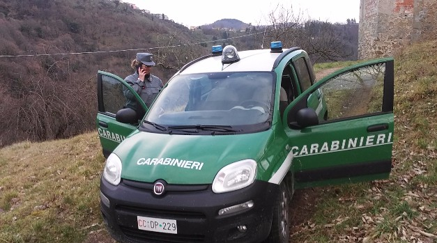 Image result for CARABINIERI FORESTALI SUI RIFIUTI IN CAMPANIA